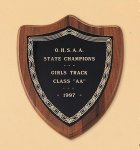 American Walnut Shield Plaque with a Black Brass Plate Achievement Award Trophies