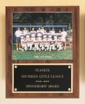 Plaque with Slide-in Photo or Certificate Holder Baseball Award Trophies