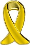 Hope/Support Our Troops Awareness Pin Lapel Pins