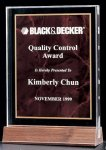 Acrylic Award with a Ruby Marble Center Square Rectangle Awards