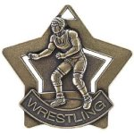 Wrestling Star Star Awards