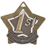 1st Place Star Gold Star Awards